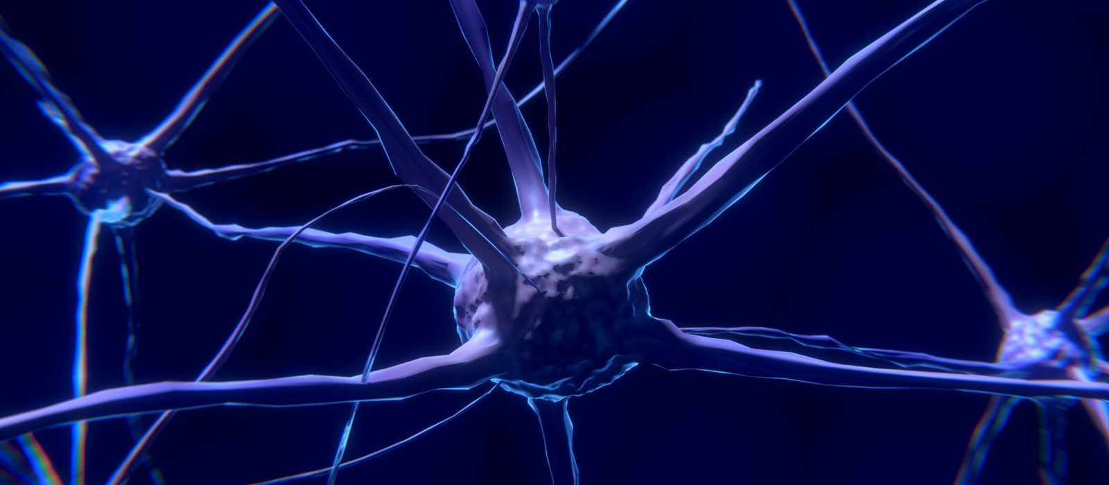 nerve-cell-2213009