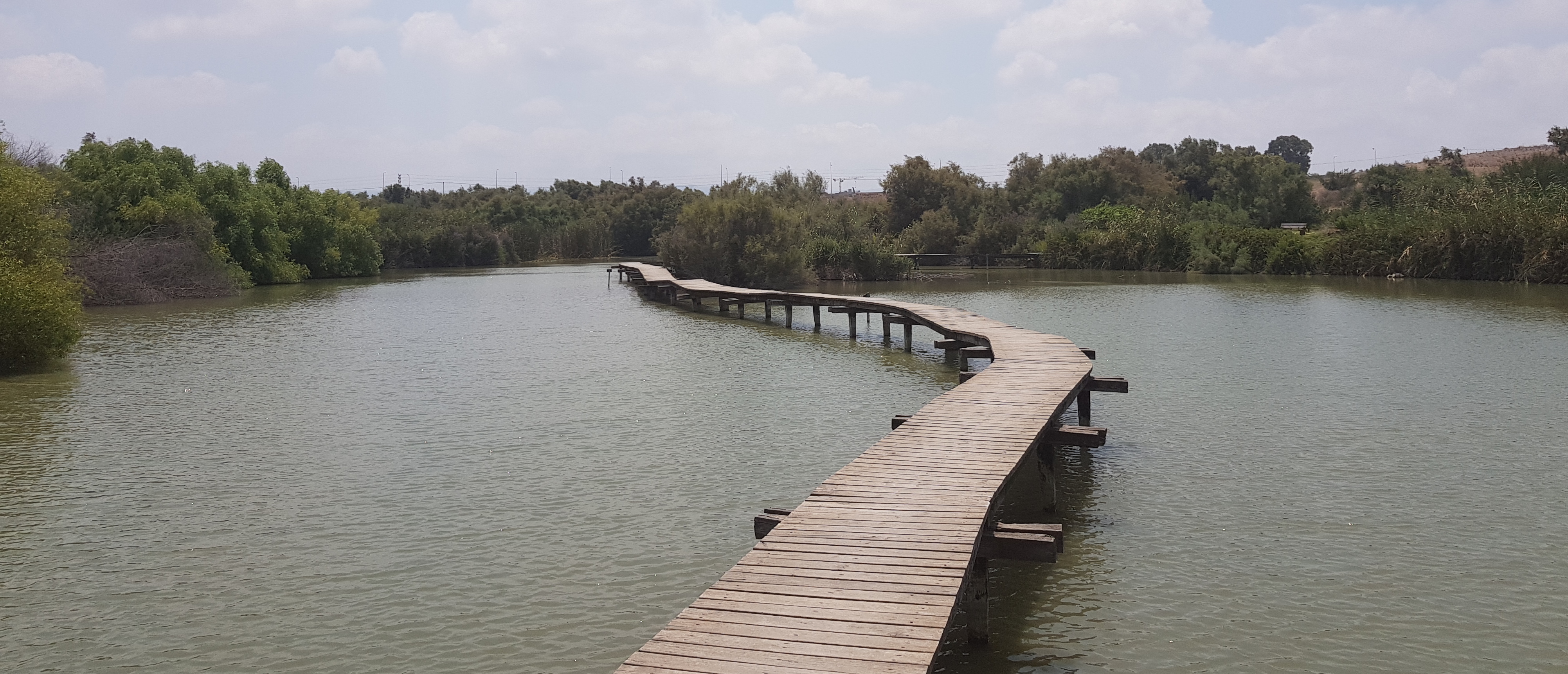תכנית עבודה - גשר על המים